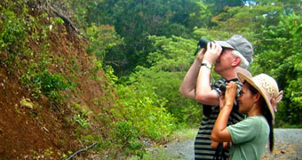 Thailand Bird Watching Tours