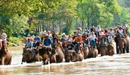 Thailand Biodiversity
