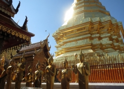 Best of Bangkok and ChiangMai