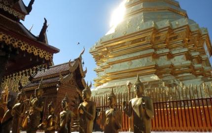 Best of Bangkok and ChiangMai