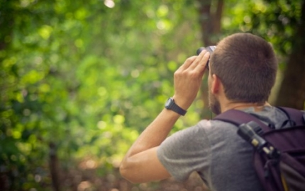 Experience bird watching in Thailand's most beautiful mountain