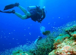 The lively natural beauty of Similan Islands